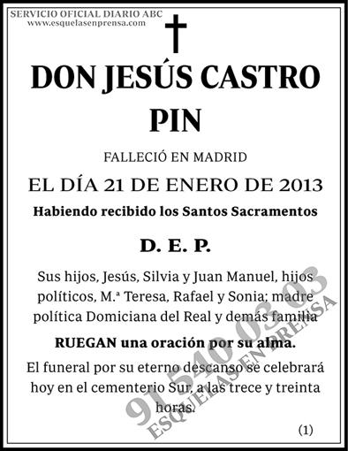 Jesús Castro Pin